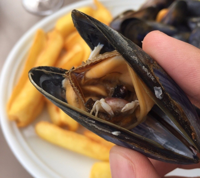 My mussel contained a tiny half-eaten crab! - Imgur